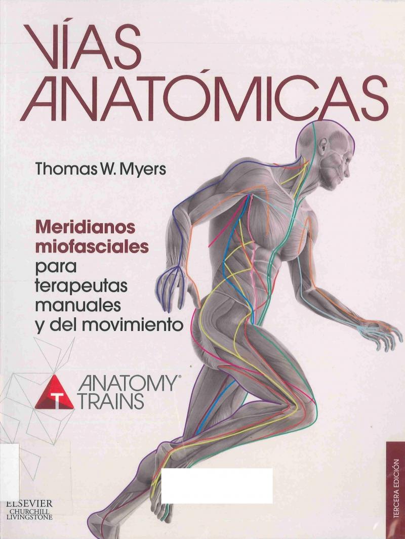 Vías anatómicas : meridianos miofasciales para terapeutas manuales y del movimiento / Thomas W. Myers ; ilustraciones: Graeme Chambers, Debbie Maizels, Philip Wilson ; [revisión científica: Josep Ferrer]
