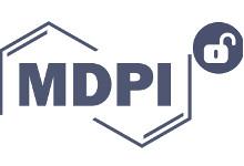 Taller MDPI y el futuro del acceso abierto