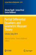 Partial Differential equations and geometri measure theory
